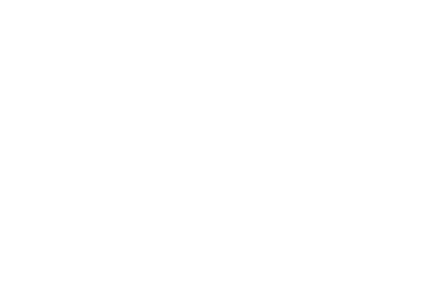 Turley Solutions & Innovations White Logo